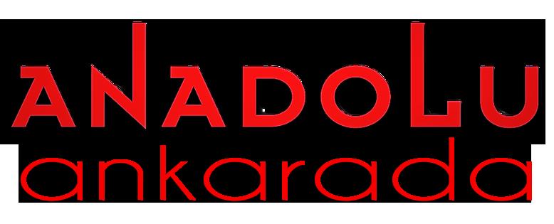 Anadolu Sanat Ankarada