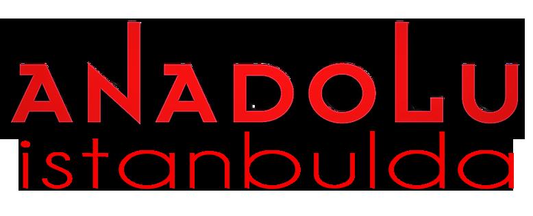 Anadolu Sanat İstanbulda