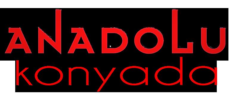 Anadolu Sanat Konyada