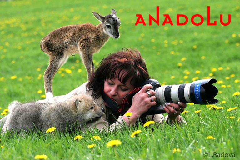 Doğa Fotoğrafçılığı Kursları